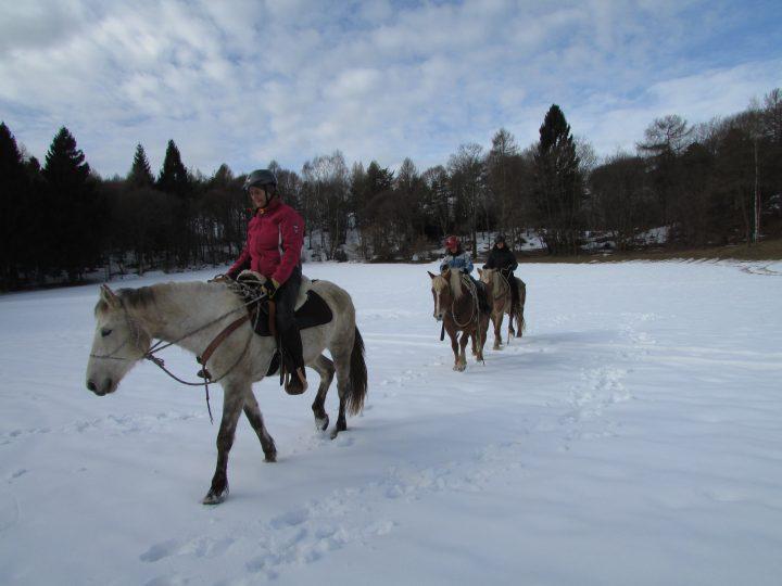 gaggio inverno 3 cavalli