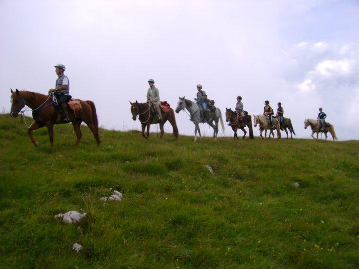 trekking vite 30-31 luglio 2011 (53)