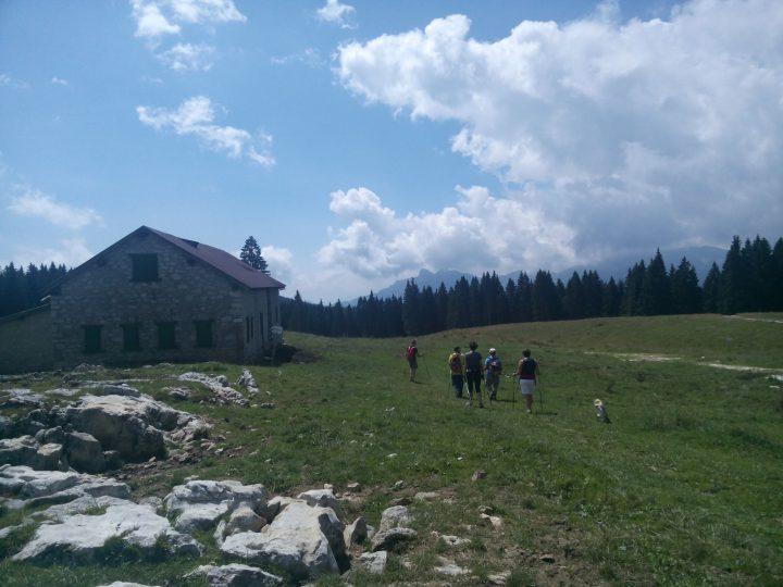Alpe cimbra Activity