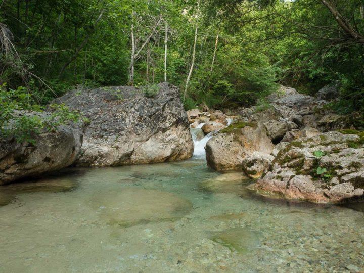 pesca a mosca sul rio Ala, Vallagarina, Trentino