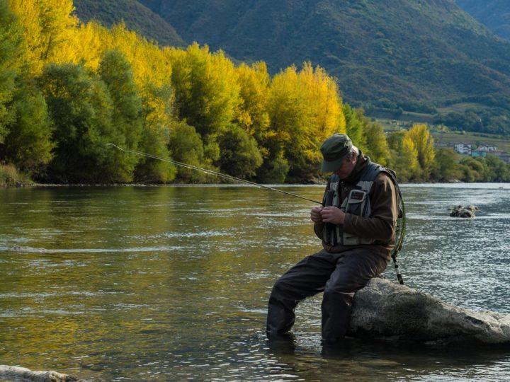 pesca a mosca nel fiume Adige presso Serravalle, Vallagarina, Trentino