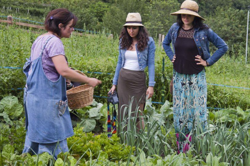 fattoria didattica agritursolasna (9)